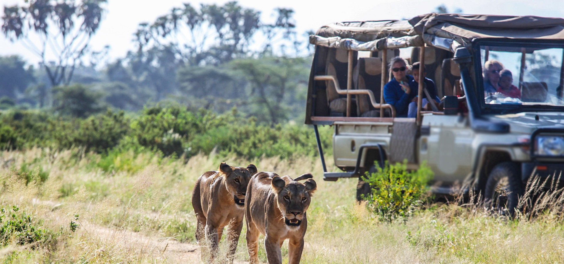 Know More About Kenya safari