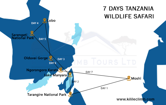 7 Days Tanzania Wildlife Safari