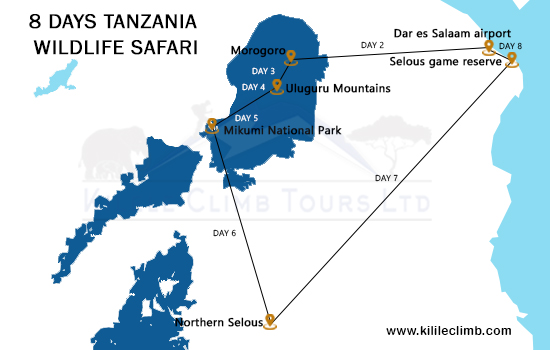 8 Days Tanzania Wildlife Safari